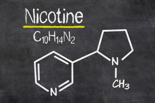 Who is chemically synthesizing nicotine?